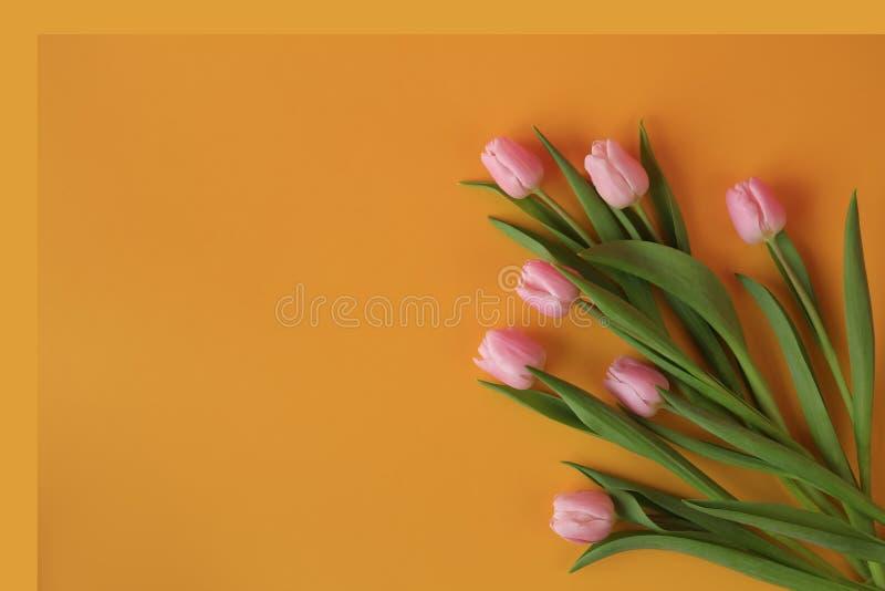 Bos van zeven roze tulpen op gele achtergrond royalty-vrije stock foto