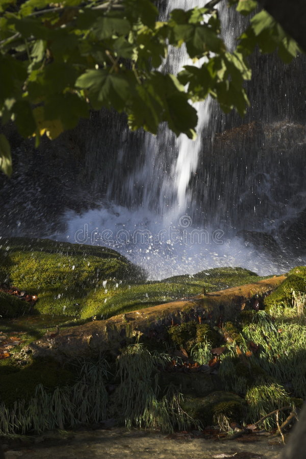 Bos watervallen stock foto