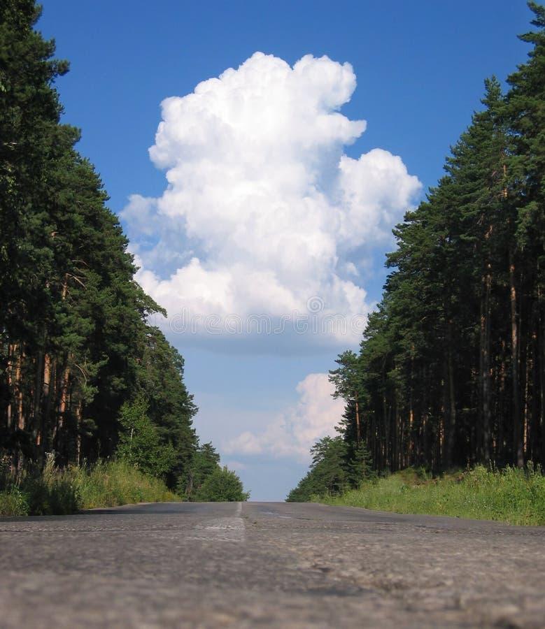 Bos weg en wolken stock afbeelding