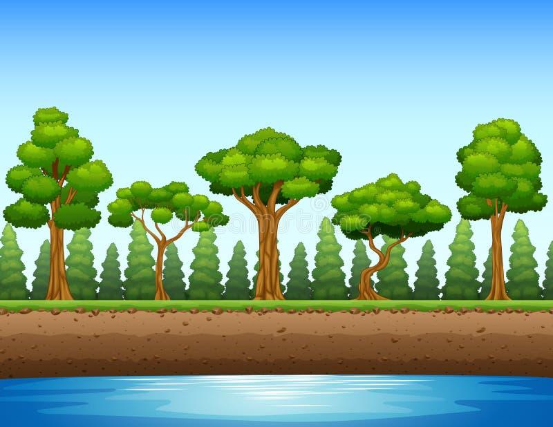 Bosachtergrond met rivier en ondergronds stock illustratie