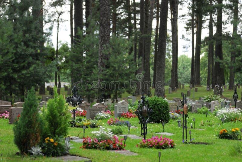 Bosbegraafplaats royalty-vrije stock afbeelding