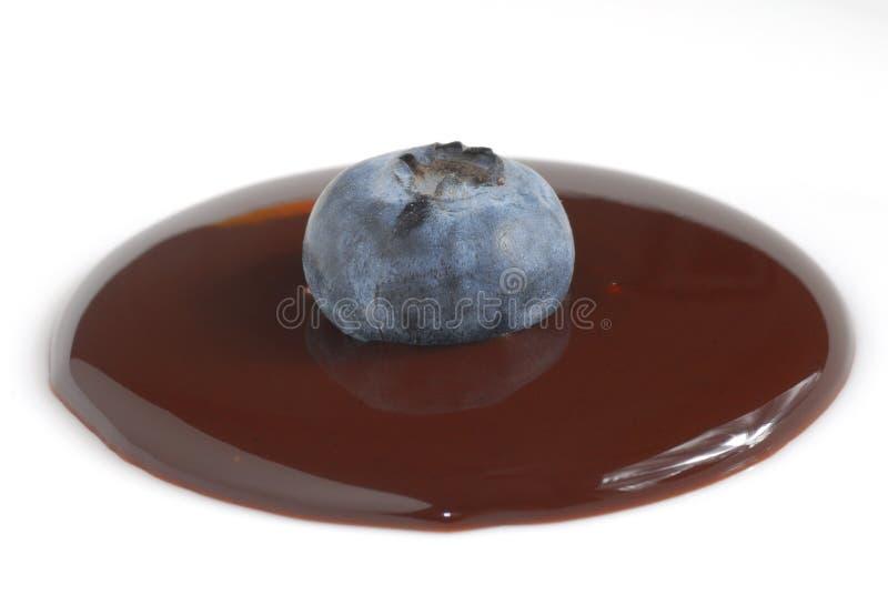 Bosbes in chocolade stock foto's