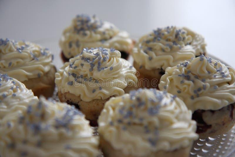 Bosbes cupcakes stock afbeelding