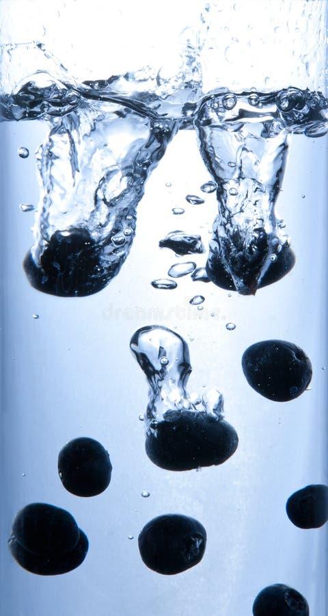 Bosbessen in het water stock fotografie