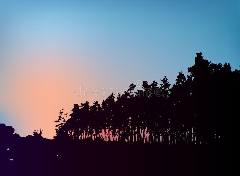 Bosbomensilhouet op zonsondergang vectormalplaatje royalty-vrije illustratie