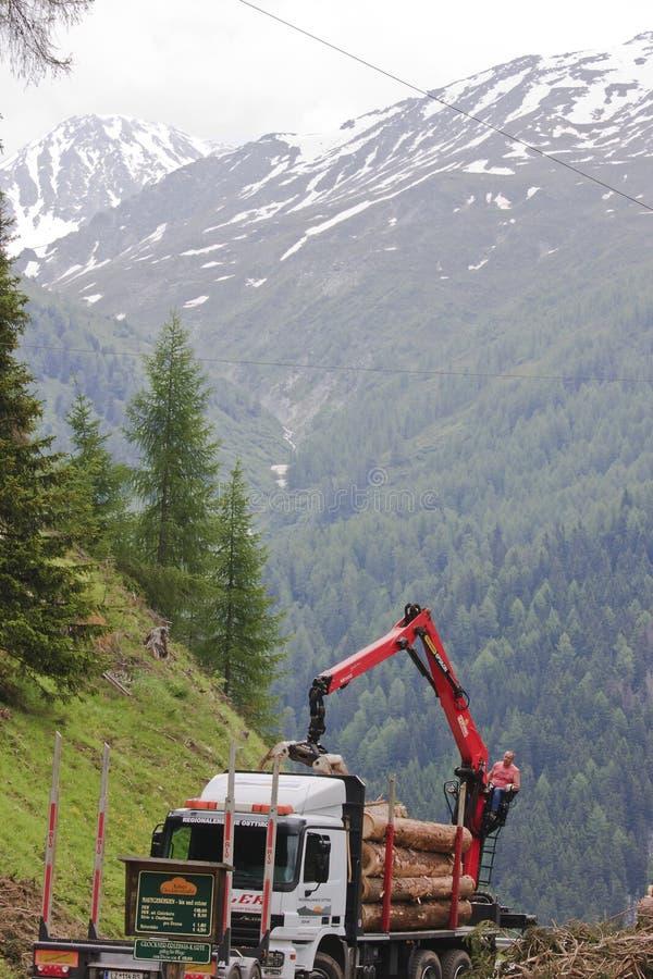 Bosbouw in de vallei van Tyroler Koednitz, Oostenrijk royalty-vrije stock foto