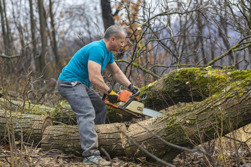 Bosbouwarbeider - de houthakkerswerken met kettingzaag Hij snijdt groot stock foto