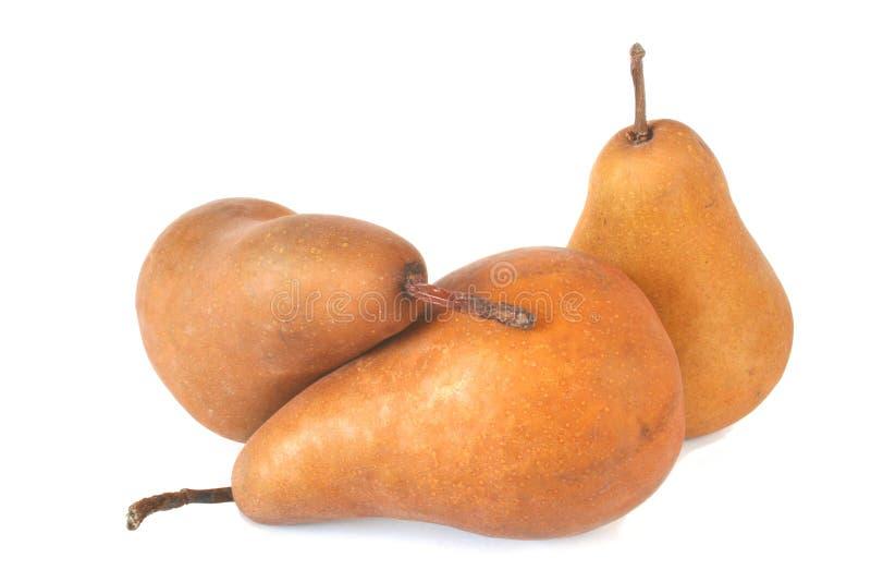 bosc αχλάδια στοκ φωτογραφία με δικαίωμα ελεύθερης χρήσης