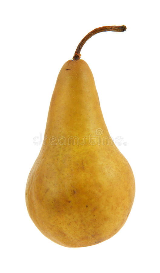 Free Bosc Pear Royalty Free Stock Photography - 11894807