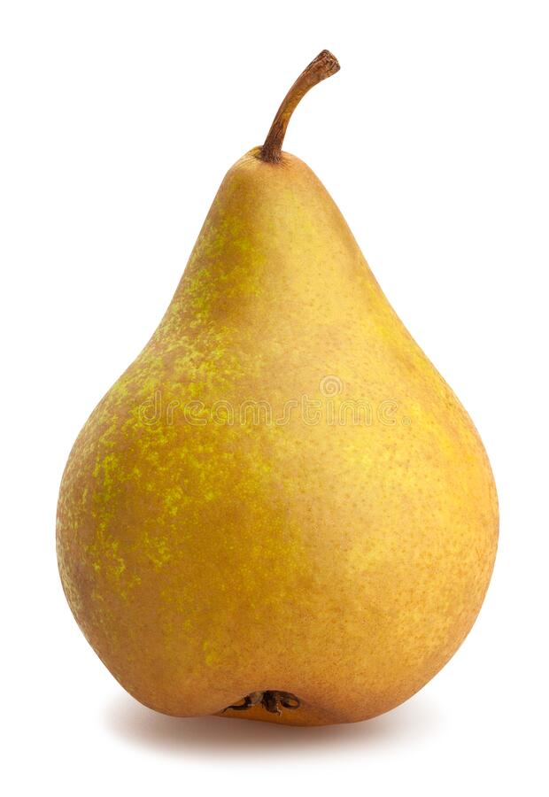 Free Bosc Pear Stock Images - 188160084