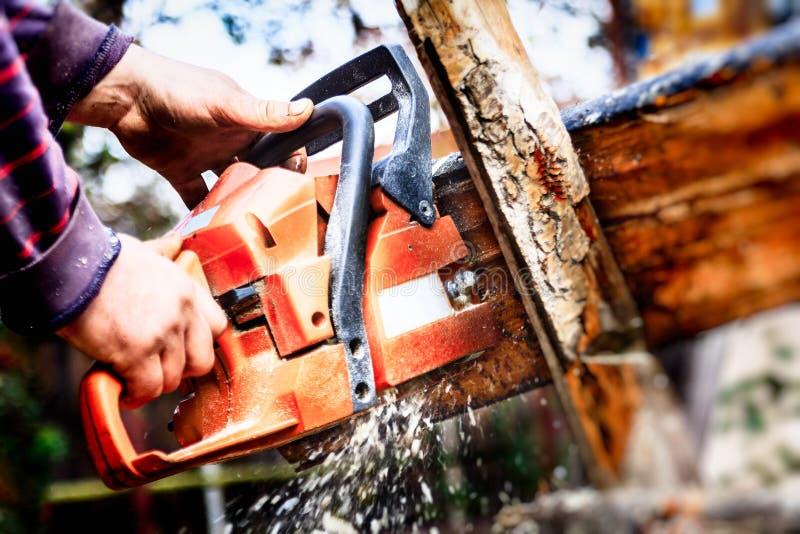 Download Boscaiolo Con Una Motosega Che Fa Legna Da Ardere Fotografia Stock - Immagine di nave, firewood: 30826424