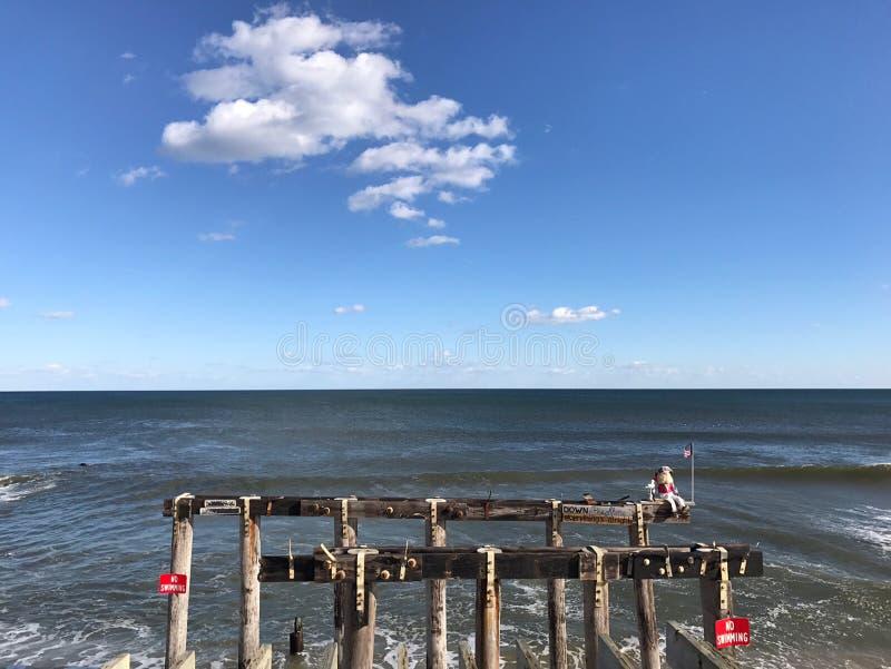 Boschetto New Jersey dell'oceano immagine stock
