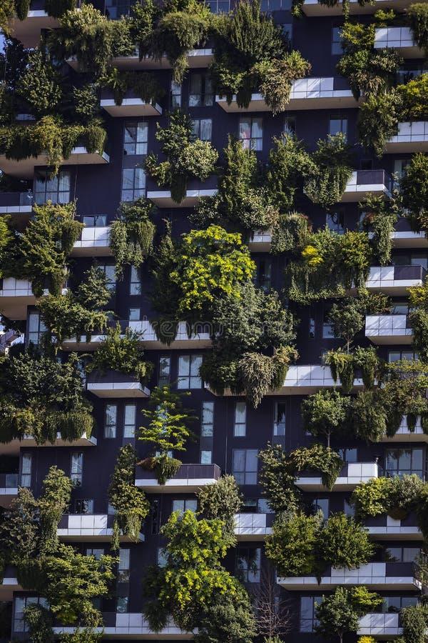 Bosco Verticale Två moderna byggnader kombinerade design och ekologi i centret med en skog av 1000 träd royaltyfria bilder
