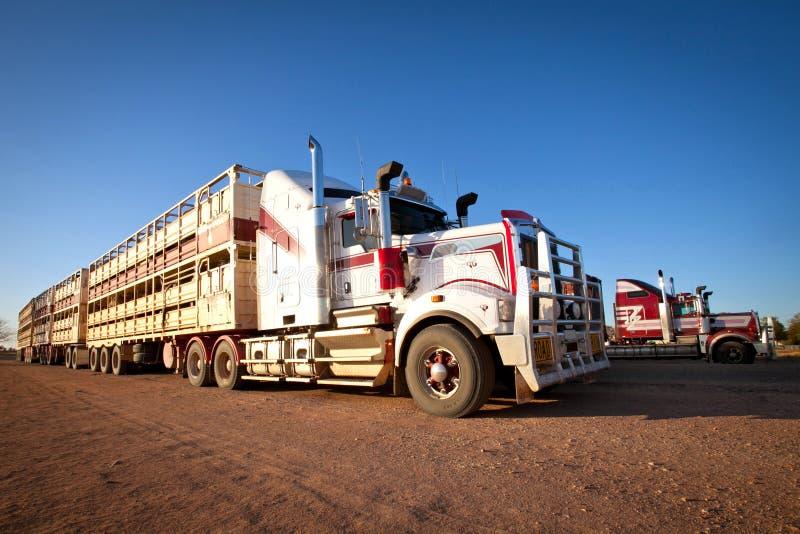 Boskapsvagnar för vägdrev av vildmark Australien arkivfoto