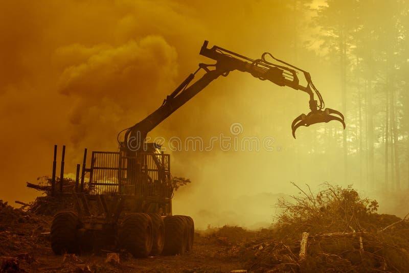 Bosknipsel, het branden van bosafval Rook en brand, tractor N stock fotografie