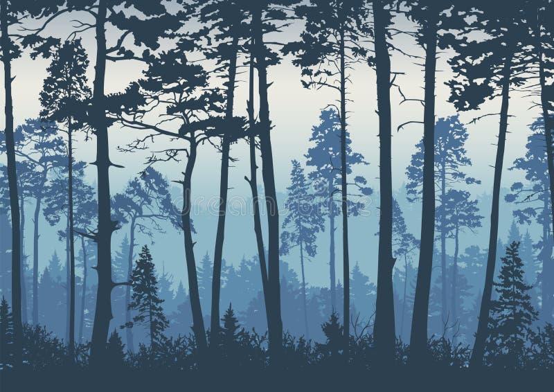 Boslandschapsachtergrond Bomenpijnbomen bij dageraad nave Toerisme en het reizen Naaldbos stock illustratie