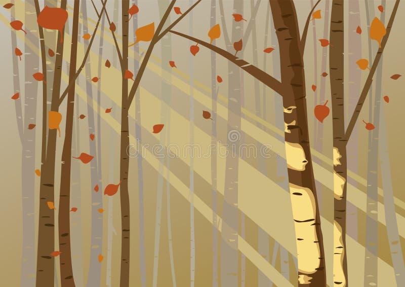 Boslicht in de herfst royalty-vrije illustratie