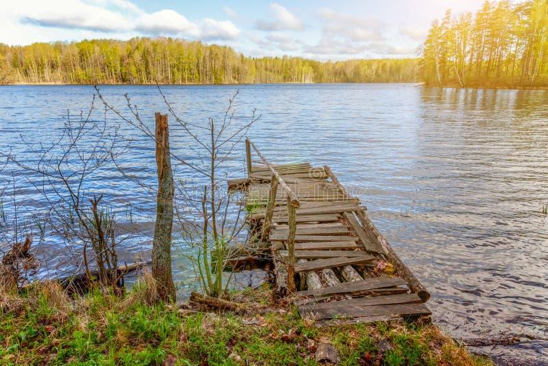 Bosmeer of rivier op de zomerdag en oude rustieke houten dok of pijler stock fotografie