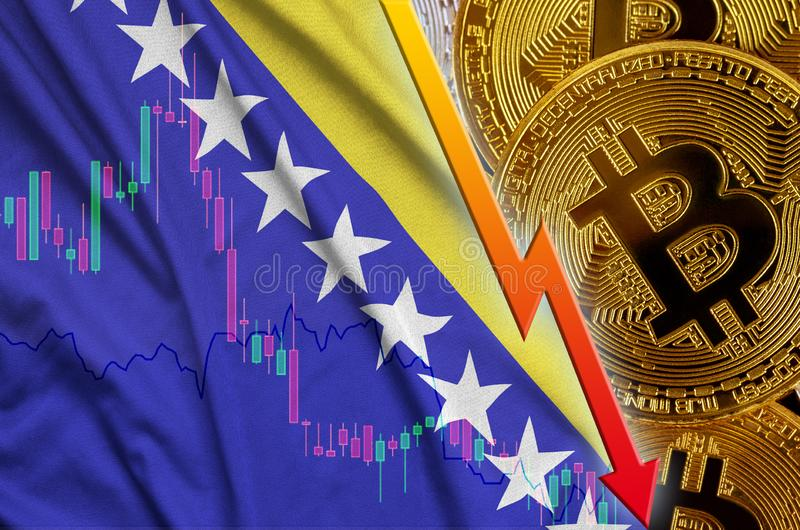 Bosnia and Herzegovina flag and cryptocurrency falling trend with many golden bitcoins. Concept of reduction Bitcoin in price or bad conversion in stock photo
