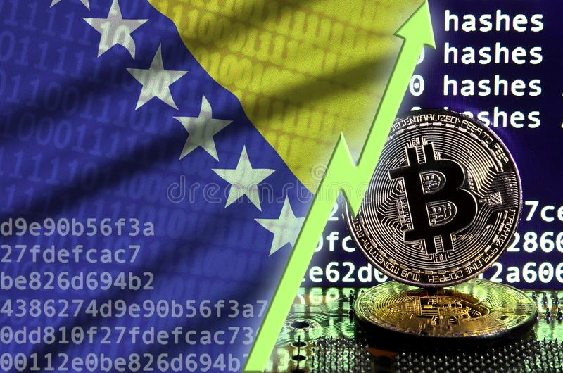 Bosnia and Herzegovina flag and rising green arrow on bitcoin mining screen and two physical golden bitcoins. Concept of high conversion in cryptocurrency stock photo