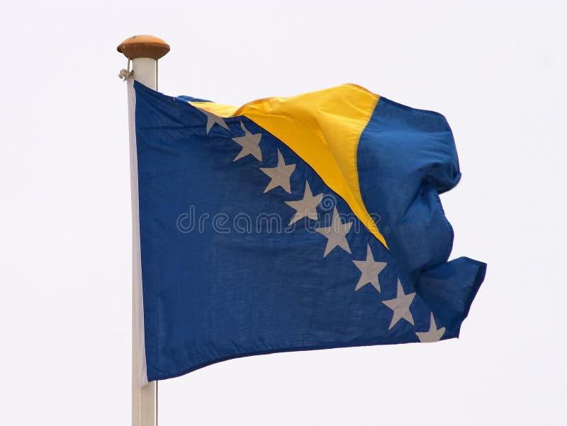 Bosniens-Herzegowina Markierungsfahne stockfotos