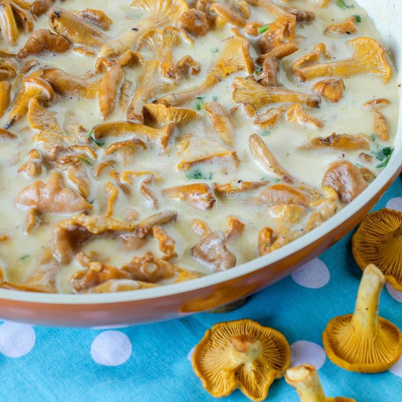 Bospaddestoelencantharellen cooking stock fotografie