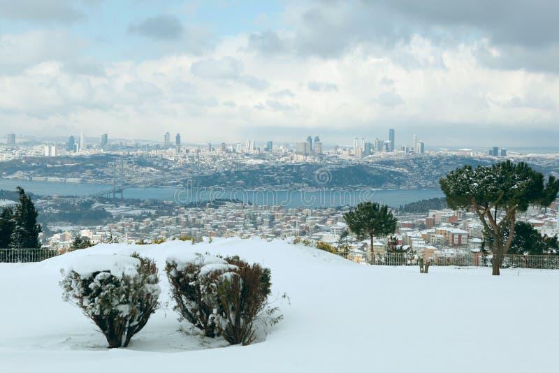 Download The Bosphorus Bridge On A Snowy Day Stock Photo - Image of bosphorus, pine: 23156882