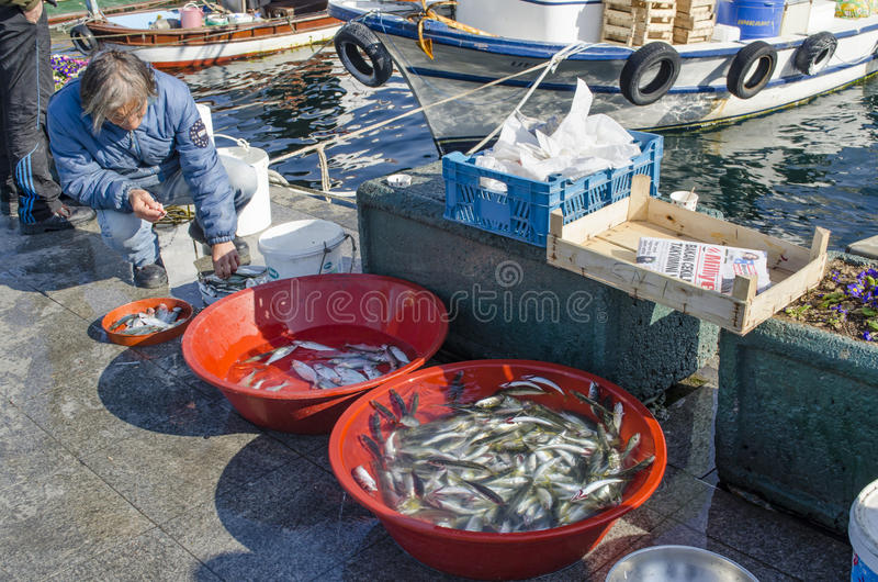 Bosphorus d'Istanbul, canne à pêche avec la chasse de poissons images stock