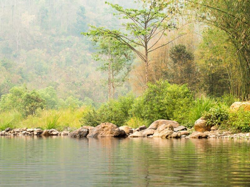 Bosque abundante del río con las piedras cerca de la cuesta de montaña imágenes de archivo libres de regalías