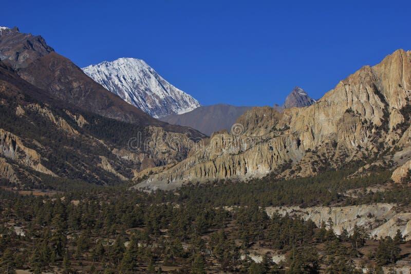 Bosque, acantilados de la piedra caliza y pico de Tilicho foto de archivo libre de regalías