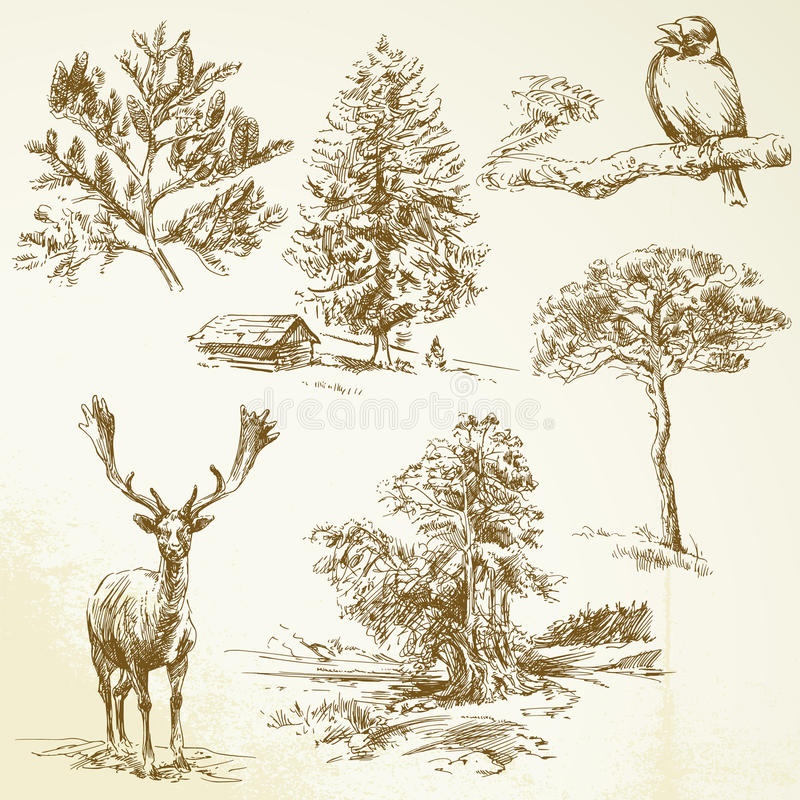 Bosque, animales, naturaleza libre illustration