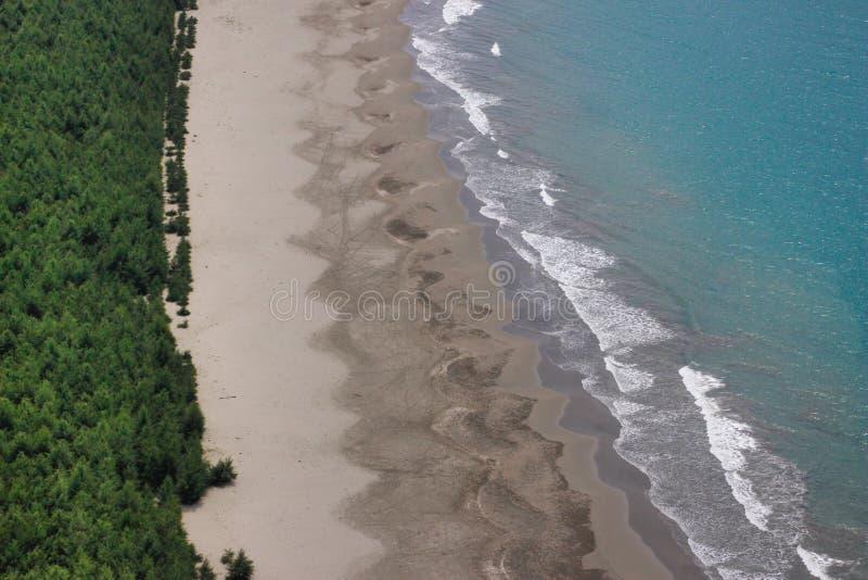 Bosque, arena y agua azul del océano Vista de la playa salvaje fotos de archivo libres de regalías