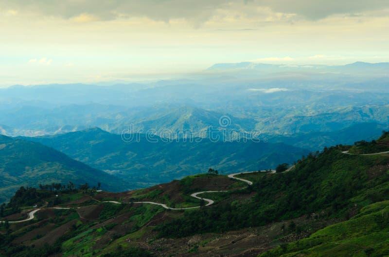 Bosque brumoso de la montaña fotos de archivo libres de regalías