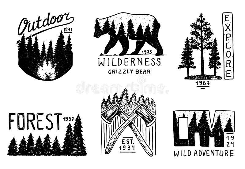 Bosque conífero, montañas y logotipo de madera el acampar y naturaleza salvaje paisajes con los árboles y las colinas de pino Emb ilustración del vector