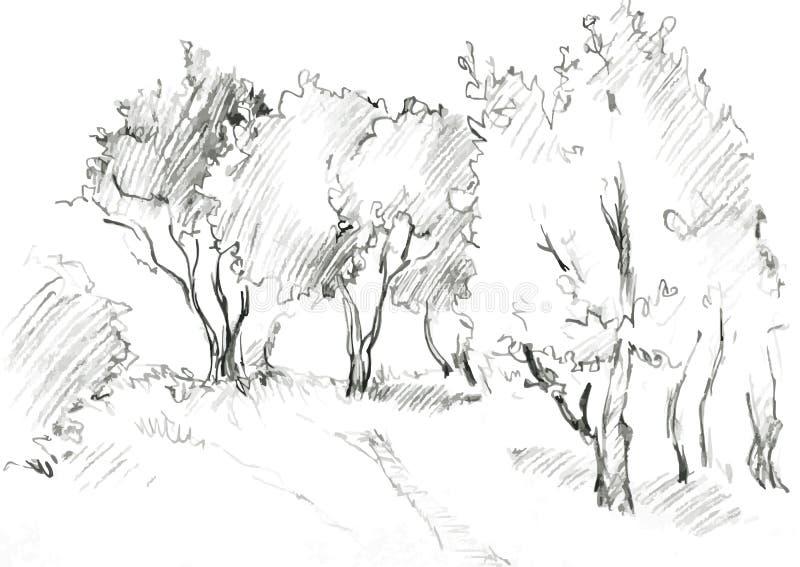 Bosque das árvores de folhas mortas ilustração stock