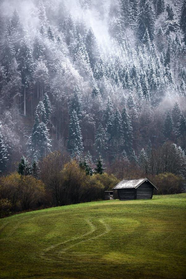 Bosque de Geroldsee durante día del otoño con la primera nieve y niebla, montañas bávaras, Baviera, Alemania imágenes de archivo libres de regalías
