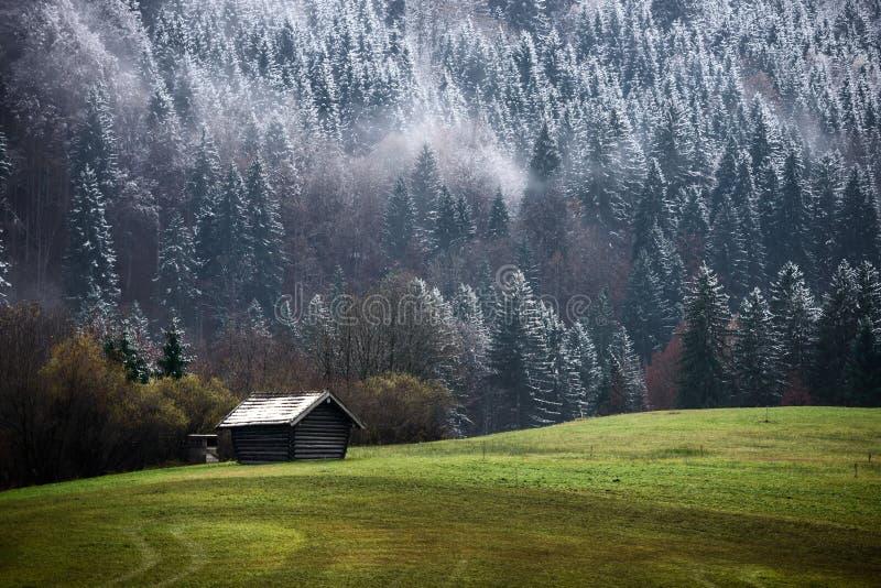 Bosque de Geroldsee durante día del otoño con la primera nieve y niebla sobre los árboles, montañas bávaras, Baviera, Alemania fotografía de archivo libre de regalías