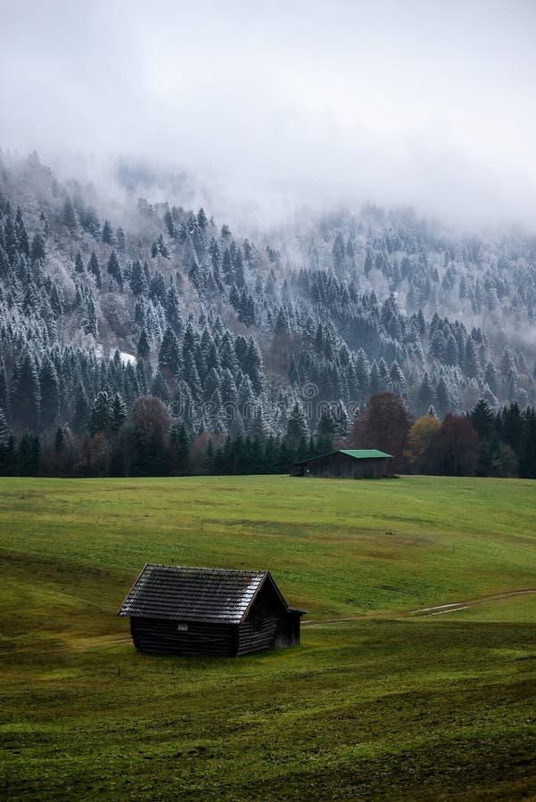 Bosque de Geroldsee durante día del otoño con la primera nieve y niebla sobre los árboles, montañas bávaras, Baviera, Alemania imagenes de archivo