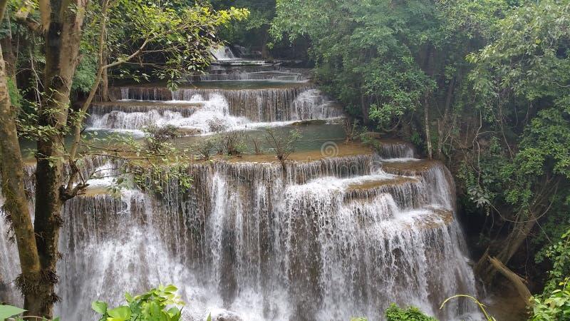 Bosque de la catarata de la caída de la cascada de la cascada fotos de archivo libres de regalías