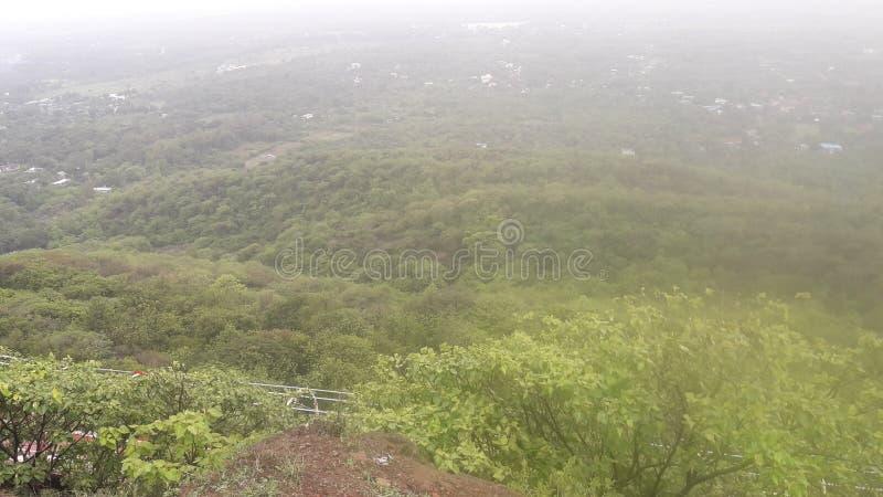 Bosque de la colina de Parnera en el valsad Gujarat la India 'beauti del valsad ' imagenes de archivo