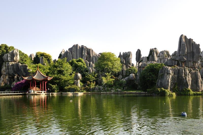 Bosque de la piedra de China fotografía de archivo libre de regalías