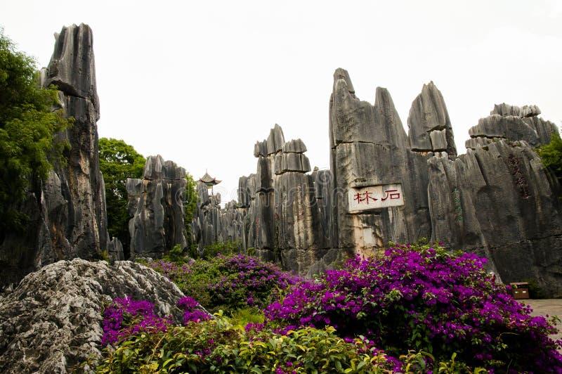 Bosque de la piedra de Shilin - Kunming - China imagenes de archivo