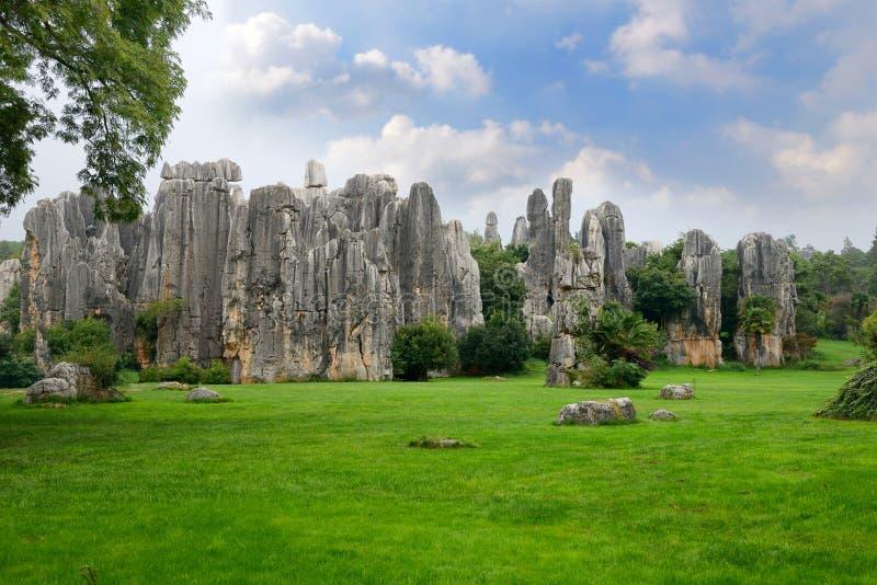 Bosque de piedra, Yunnan, China imágenes de archivo libres de regalías