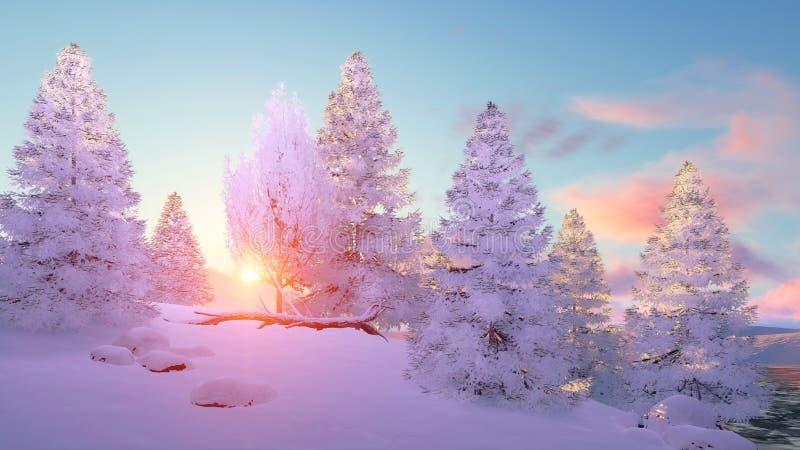 Bosque del árbol de abeto del invierno Nevado en la puesta del sol ilustración del vector