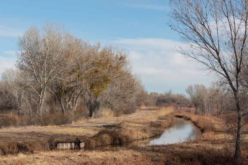 Bosque del Apache New Mexico, winter landscape along a road with flooded area, bare trees. Horizontal aspect royalty free stock photo