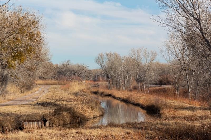 Bosque del Apache New Mexico, winter landscape with road and irrigation ditch, bare trees royalty free stock image