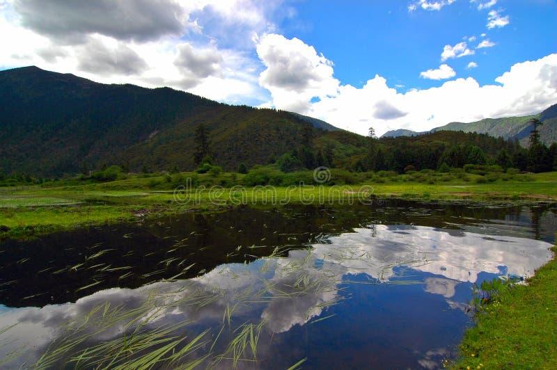 Bosque del cielo de Lunang foto de archivo libre de regalías