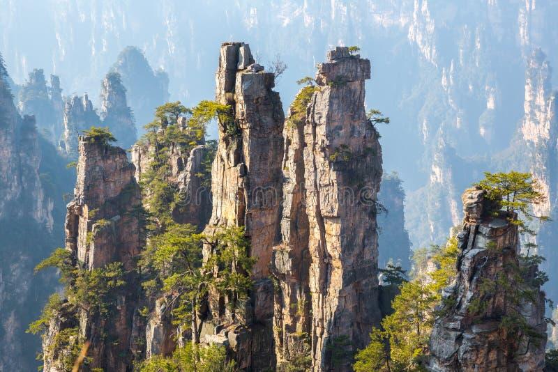 Bosque del Estado China de Zhangjiajie foto de archivo libre de regalías