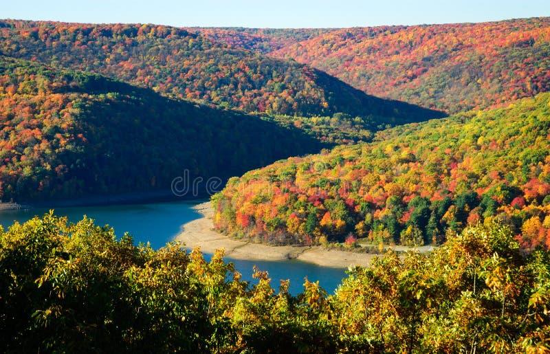 Bosque del Estado de Allegheny fotografía de archivo libre de regalías