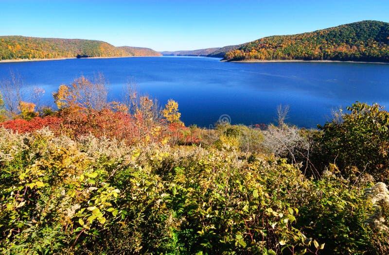 Bosque del Estado de Allegheny foto de archivo libre de regalías